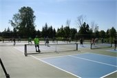 Pickleball In Action on the Court