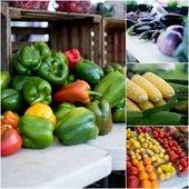 Fresh produce at the Canton Farmers Market