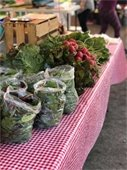 Fresh local produce.