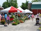 Guests shopping at tents set up with vendors and farmers selling flowers, honey, and vegetables.