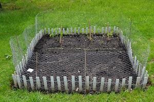 Community Garden Rental Program
