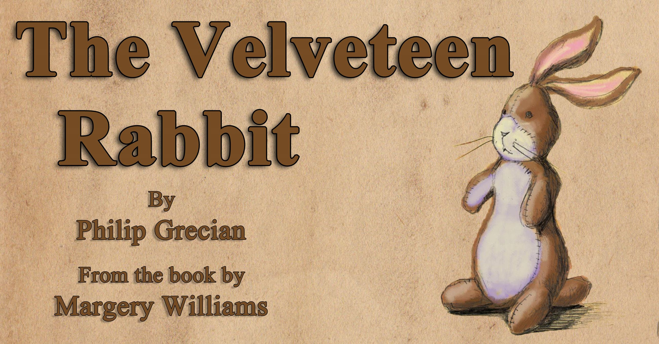 The Velveteen Rabbit Image