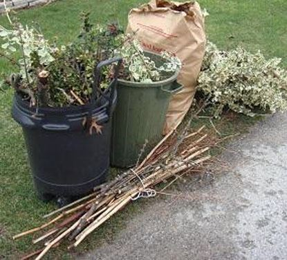 Picture of Yard Waste